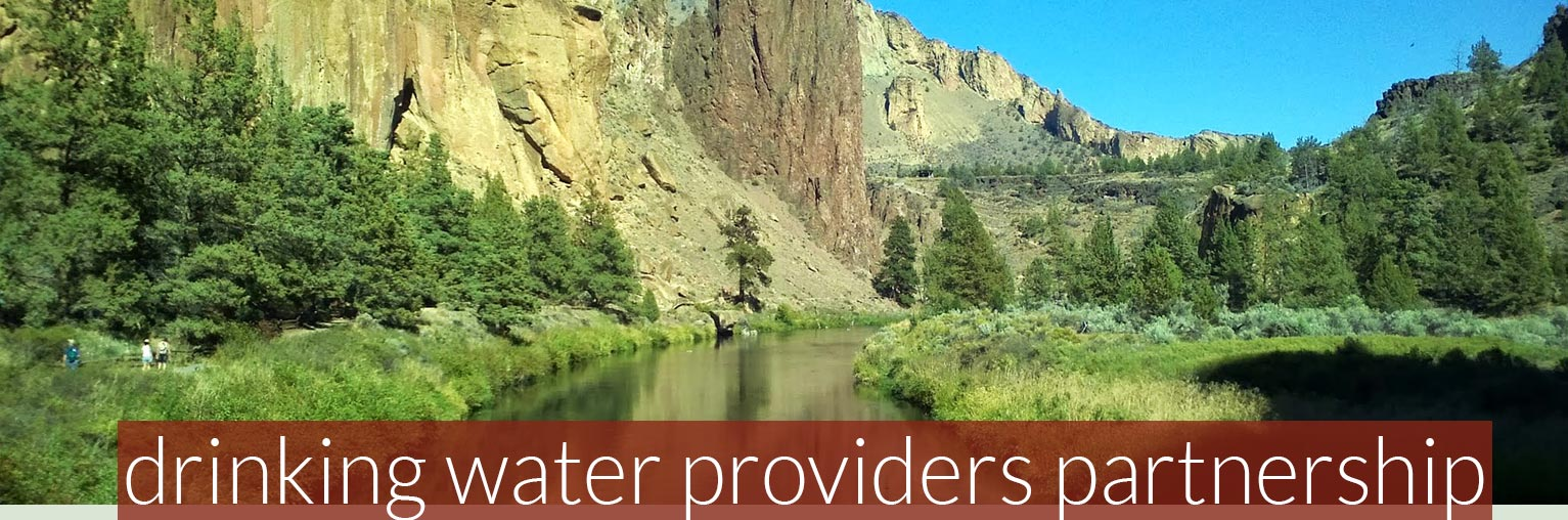 drinking water providers partnership